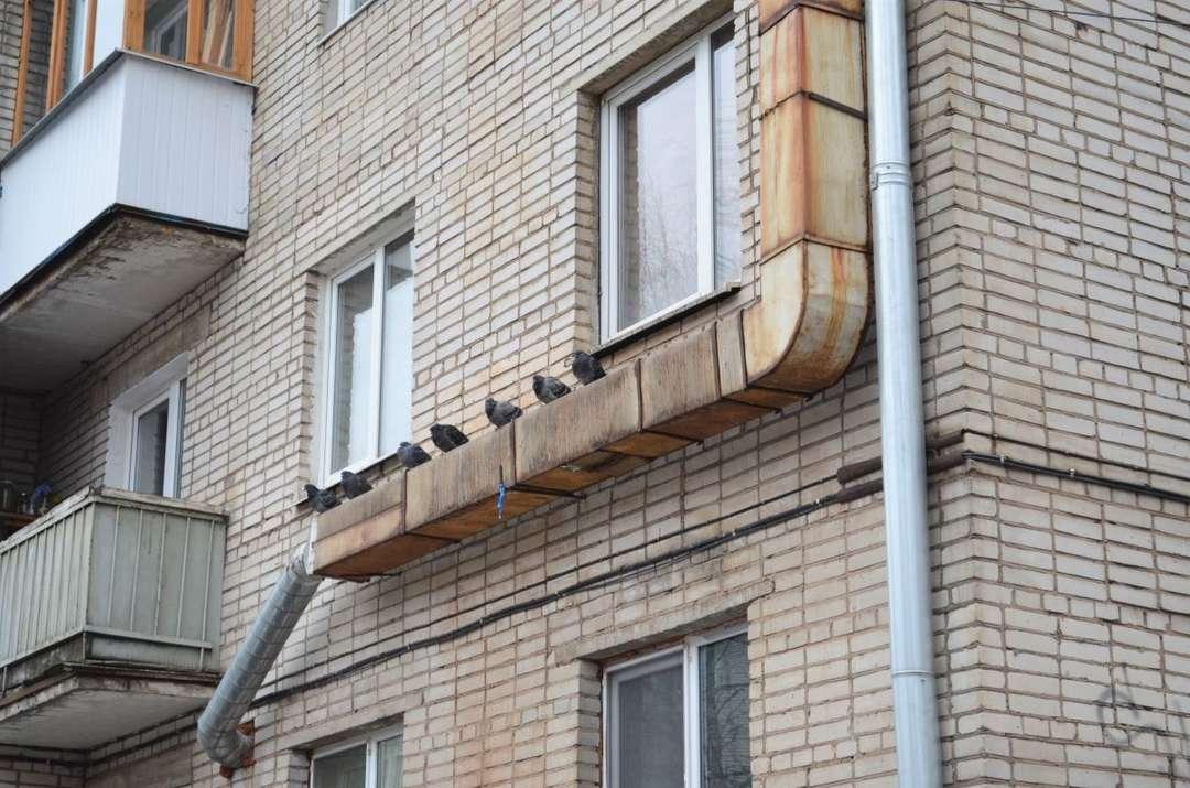 Business в аренду по адресу Россия, Новгородская область, Великий Новгород, Новолучанская улица,дом 14